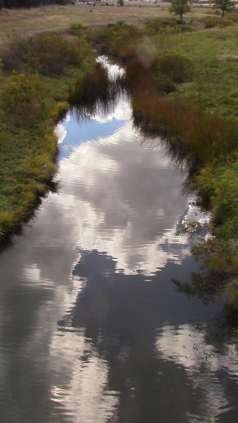 Creek reflections